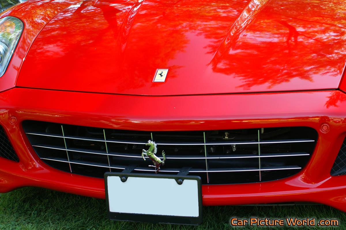 Ferrari 599 Gtb Grill Picture